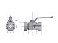 AEF Two-Way Block Body Flat Faced Ball Valves